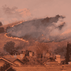 California wildfires due to failure of proper utility line clearance