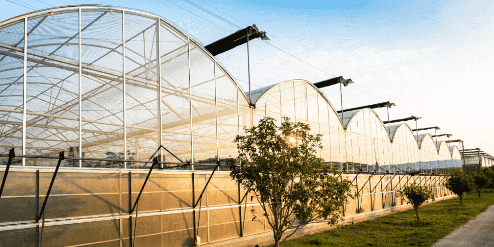 Greenhouse structures are at risk to a number of exposures