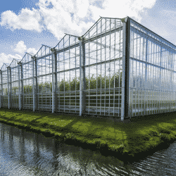 Greenhouse orientation and location may be more significant than growers think