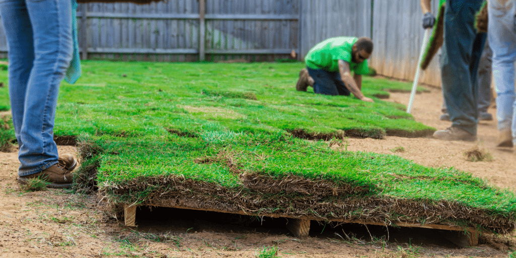 Landscaping insurance for general liability
