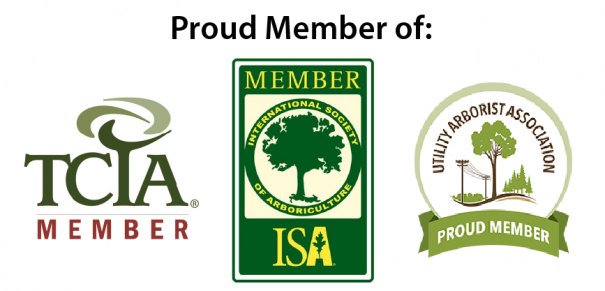 TreePro is a proud member of TCIA, ISA, and UAA