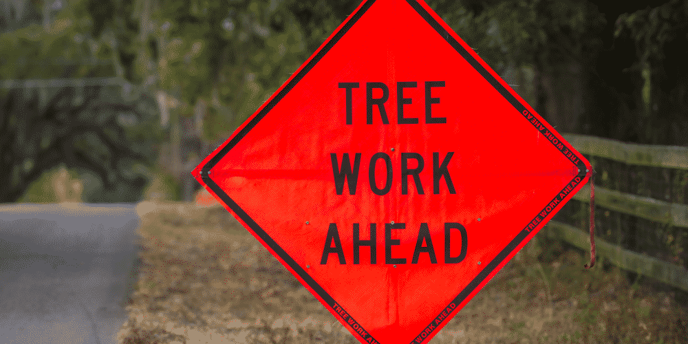 Tree care safety sign