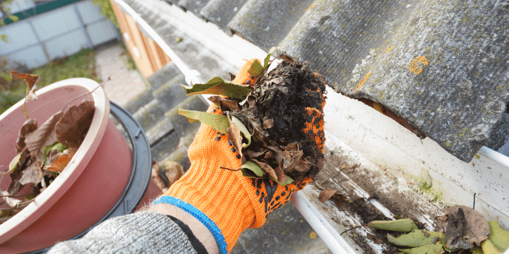 Gutter cleaning is a service your tree care business can offer clients