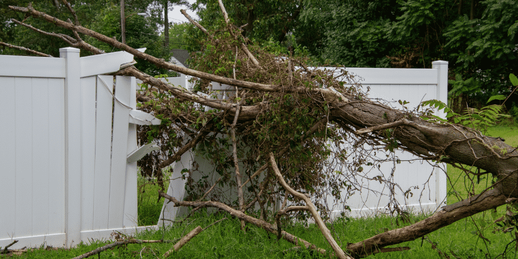 General liability claim of tree falling on fence