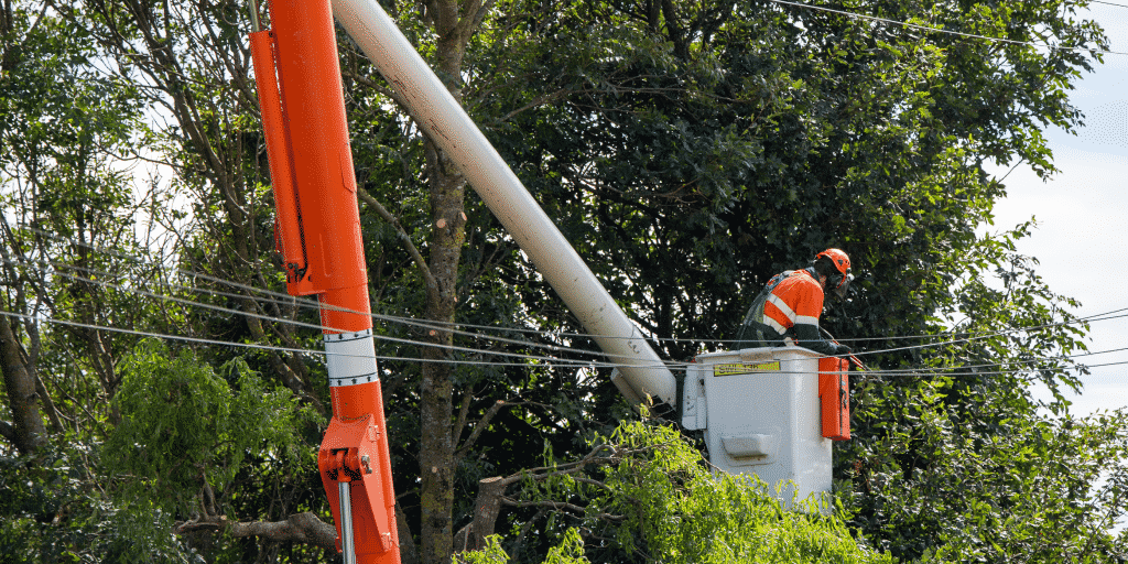 Utility line clearance workers may need to carry excess liability coverage