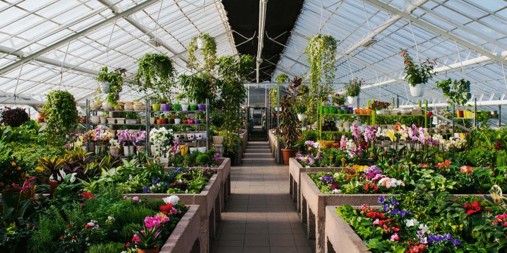 Interior of publicly open flower nursery