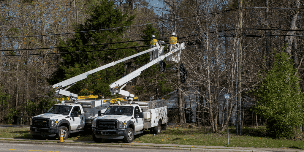 Utility line clearance workers